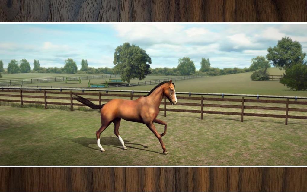 My Horse на Андроид
