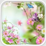 Spring Flowers Live Wallpaper – весенние обои