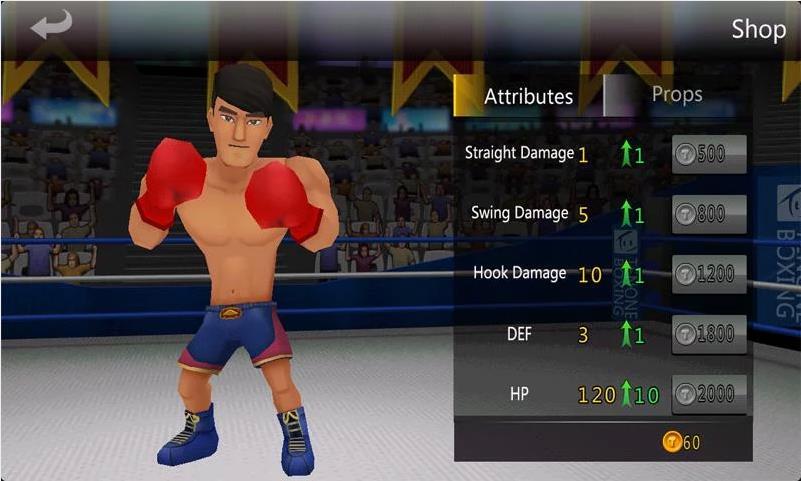 Pro 3D Boxing