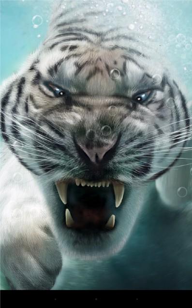 Тигры - живые обои