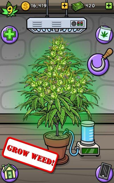 Игра симулятор выращивания марихуаны действие марихуаны на секс