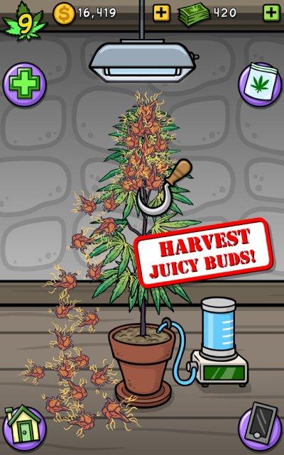 Скачать игру про коноплю сколько времени в крови держится марихуана в