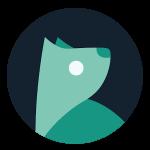Evie Launcher – популярный лаунчер на Андроид